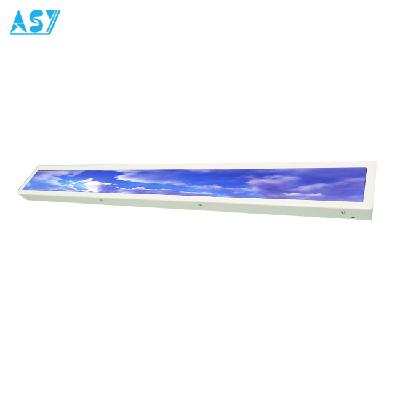 Ultra Wide Stretched Monitor Intelligent LCD Shelf  Label Solution