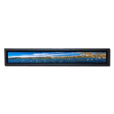 New design bar type shelf lcd for sale