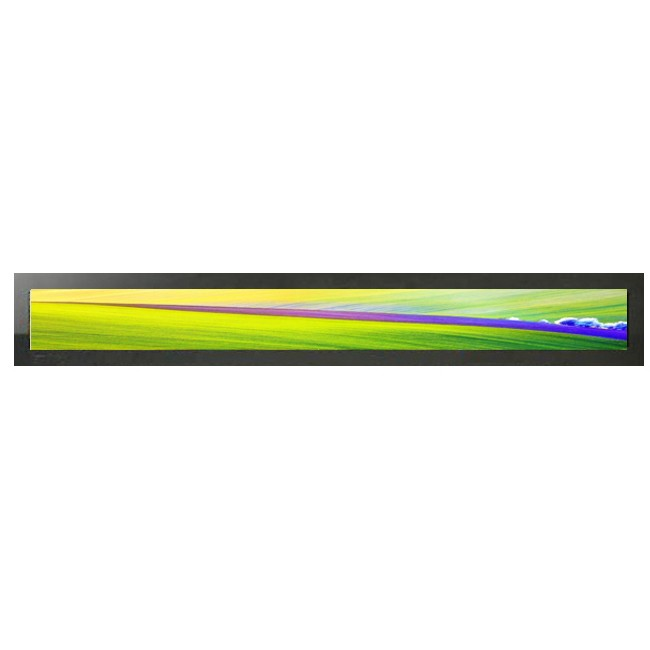 Good quality wholesale ultra thin shelf edge lcd screen for supermarket